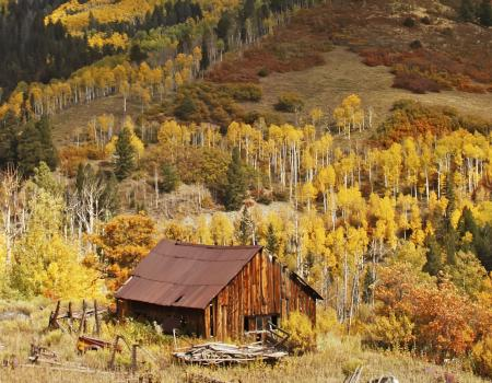 Old Cabin and Fall Colors in Telluride