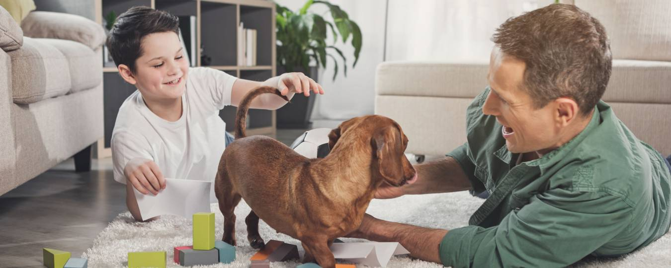 Father and son playing with pet in vacation rental
