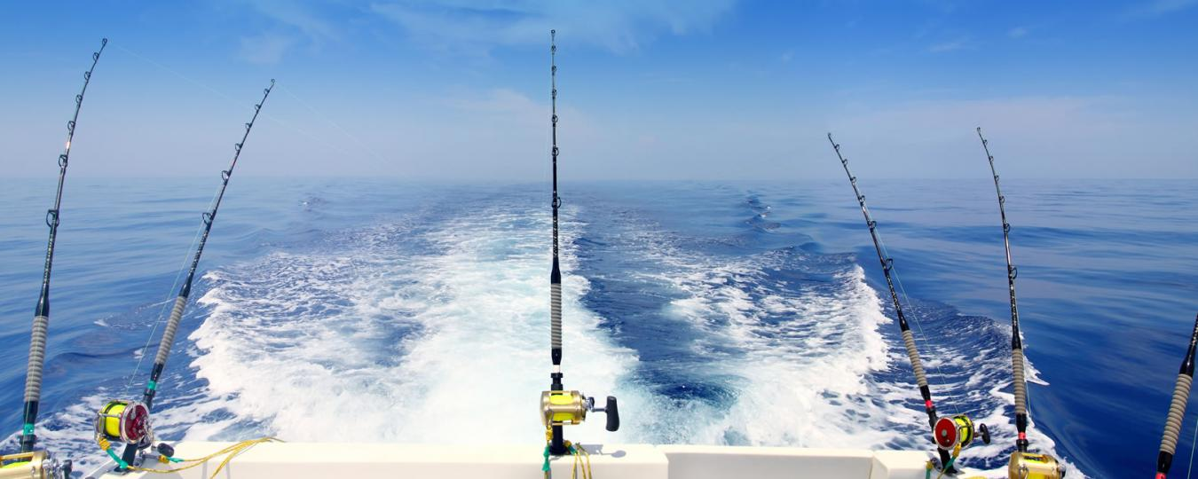Deep Sea Fishing Tropical Waters
