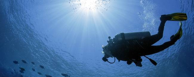 Scuba diver under water in Punta Mita