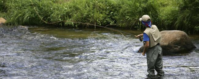 Fly Fishing Telluride