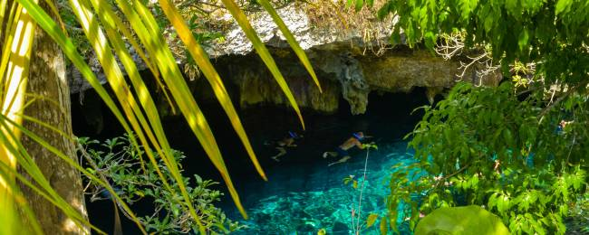 Swimming in a Cenote in Tulum, Mexico