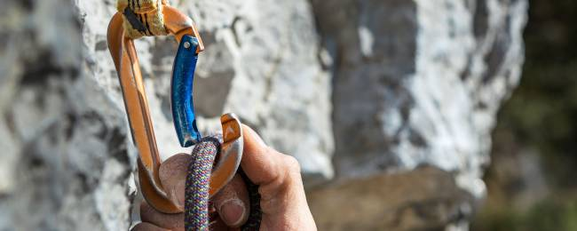 Carabiner and Bolt