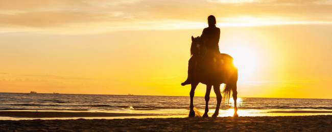Horseback Rider Silhouetted on the Beach