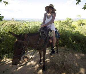 Mule Riding in Mexico