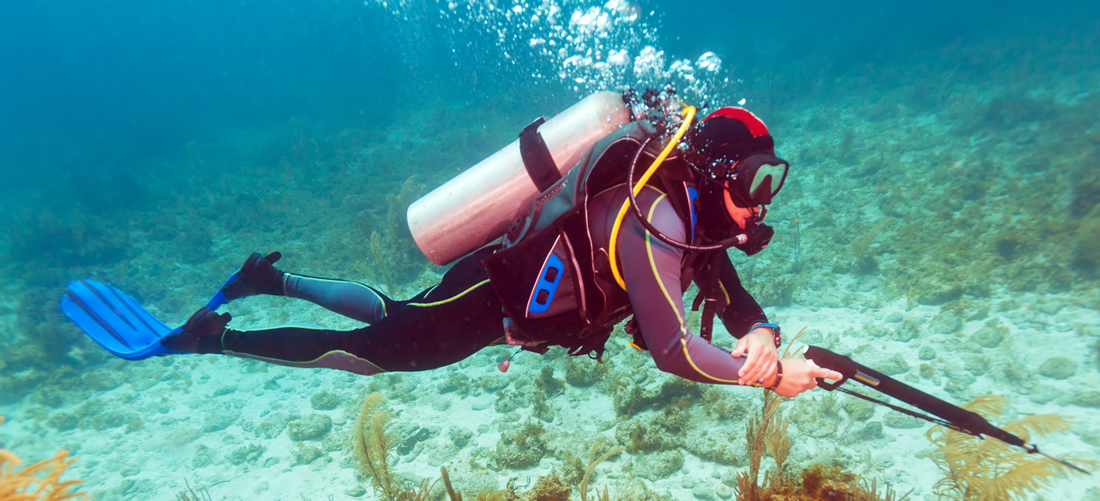 Scuba Diver with spear gun under water
